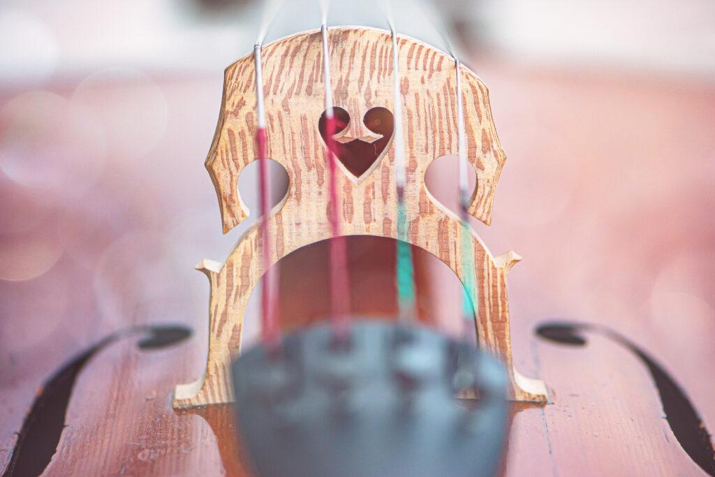 body of a cello