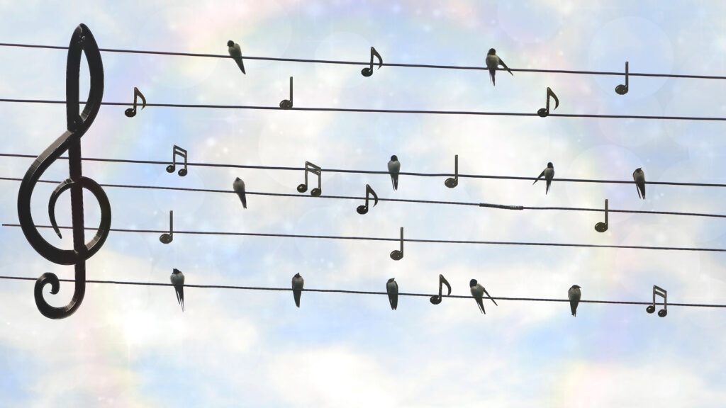 swallows on a musical stave